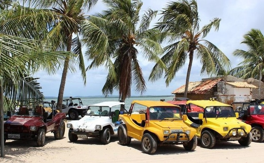 Show item 9 of 9. Mangue Seco Day Trip: Boat Ride, Sand Dunes and Swimming