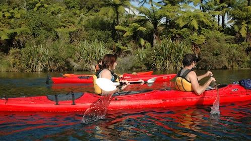People on Rotorua Guided Hotpools Kayak Trip in New Zealand.