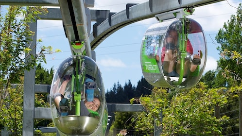 Close up of the pedal powered racing pod for Shweeb ride in Rotorua New Zealand.