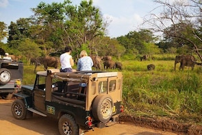 Jeep Safari to Hurulu Eco Park.