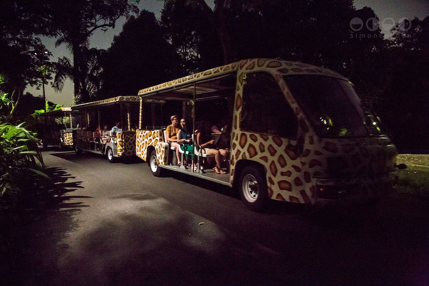 Show item 1 of 5. Singapore Night Safari with Tram Ride (Shared Transfer)