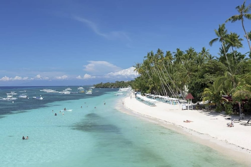Show item 2 of 6. Affordable Panglao Island Tour with Lunch