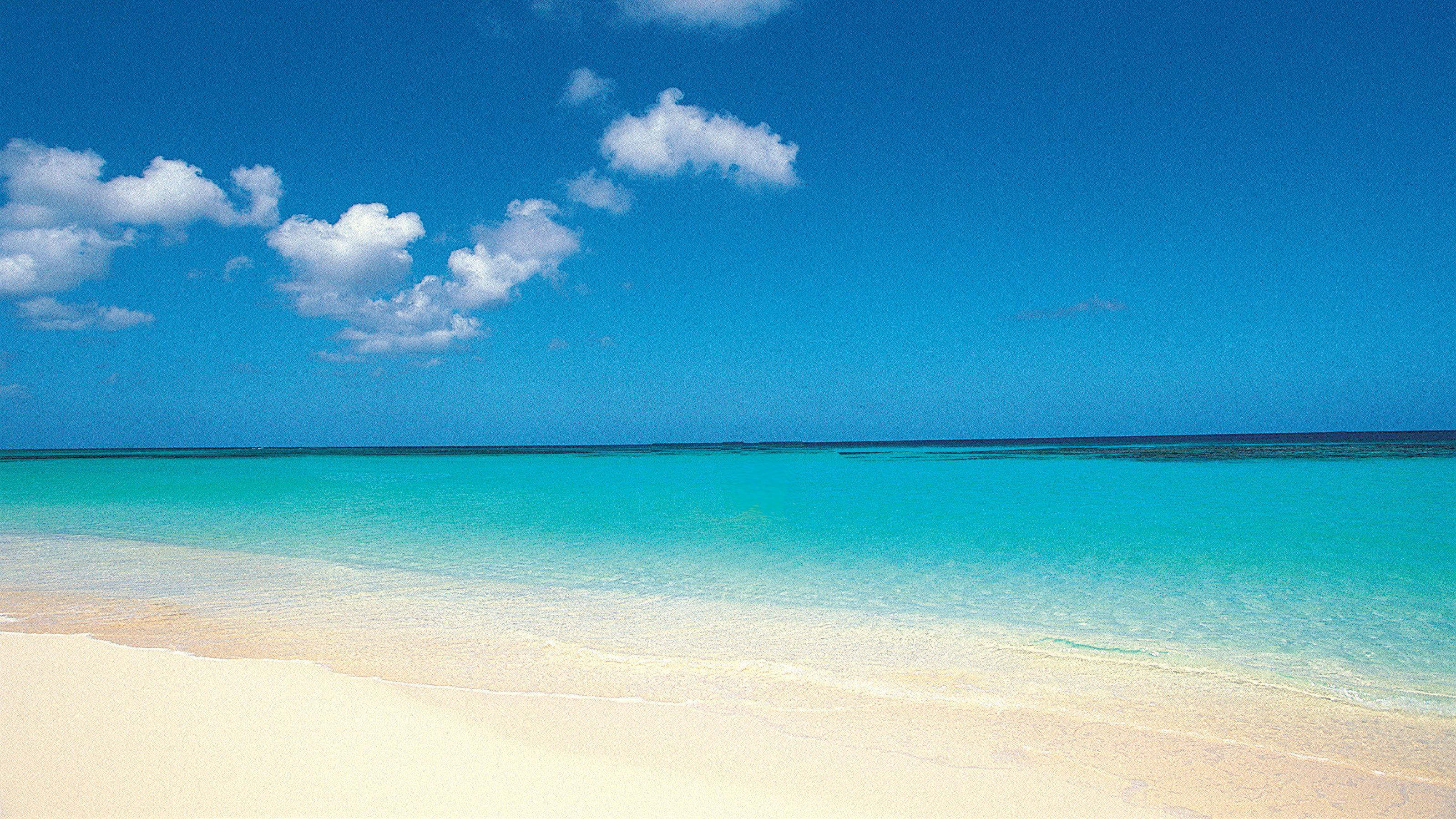 White-sand beach of Cove Bay in Saint Martin