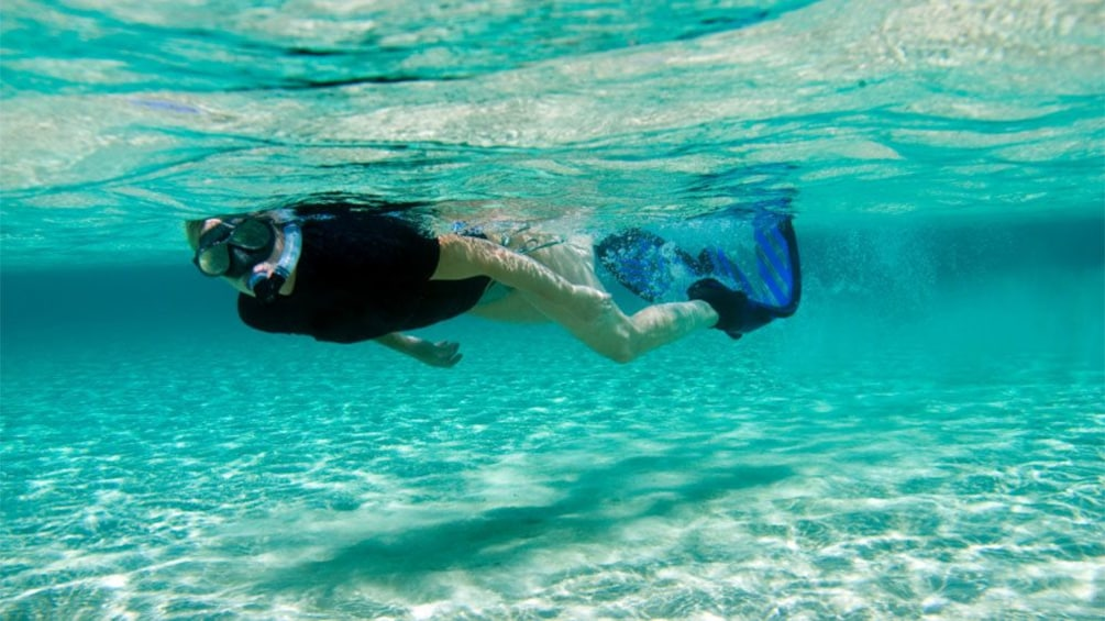 Show item 2 of 10. Woman snorkeling off the islands of Tintamarre and Pinel