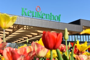 Keukenhof Guided Tour From Rotterdam plus Madurodam