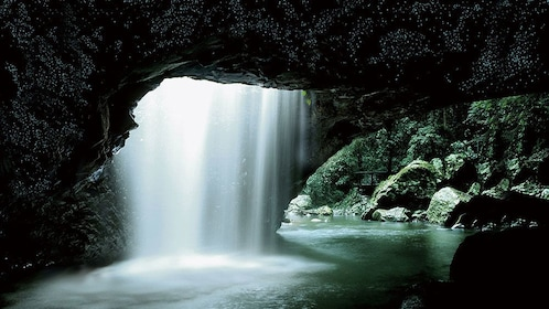Waterfall in a cave on the Gold Coast Glow Worm Night Tour in Australia