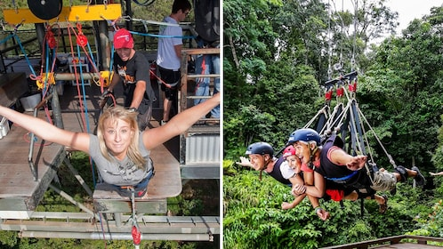 Combo image of bungy jumping and swing in Cairns