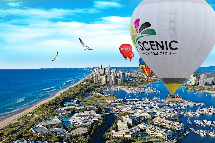 Show item 1 of 6. Gold Coast Hot Air Balloon Flight with Champagne Breakfast
