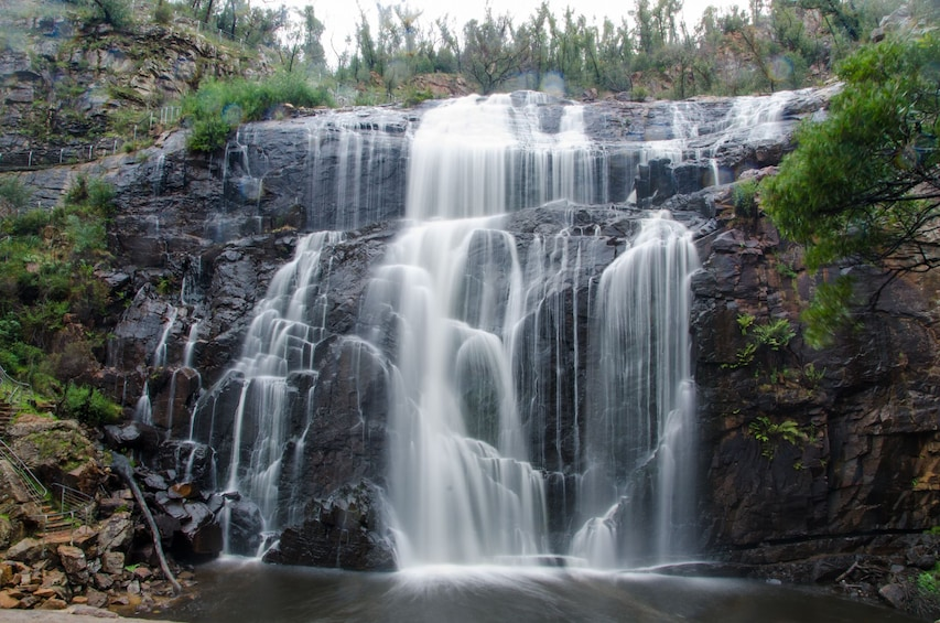 2-Day Melbourne to Adelaide Overland Touring in Small Groups