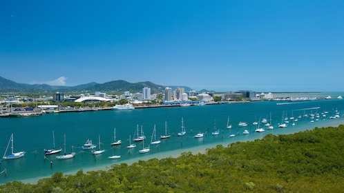 Boats on the shoreline for the Cairns Harbour Cruise in Australia