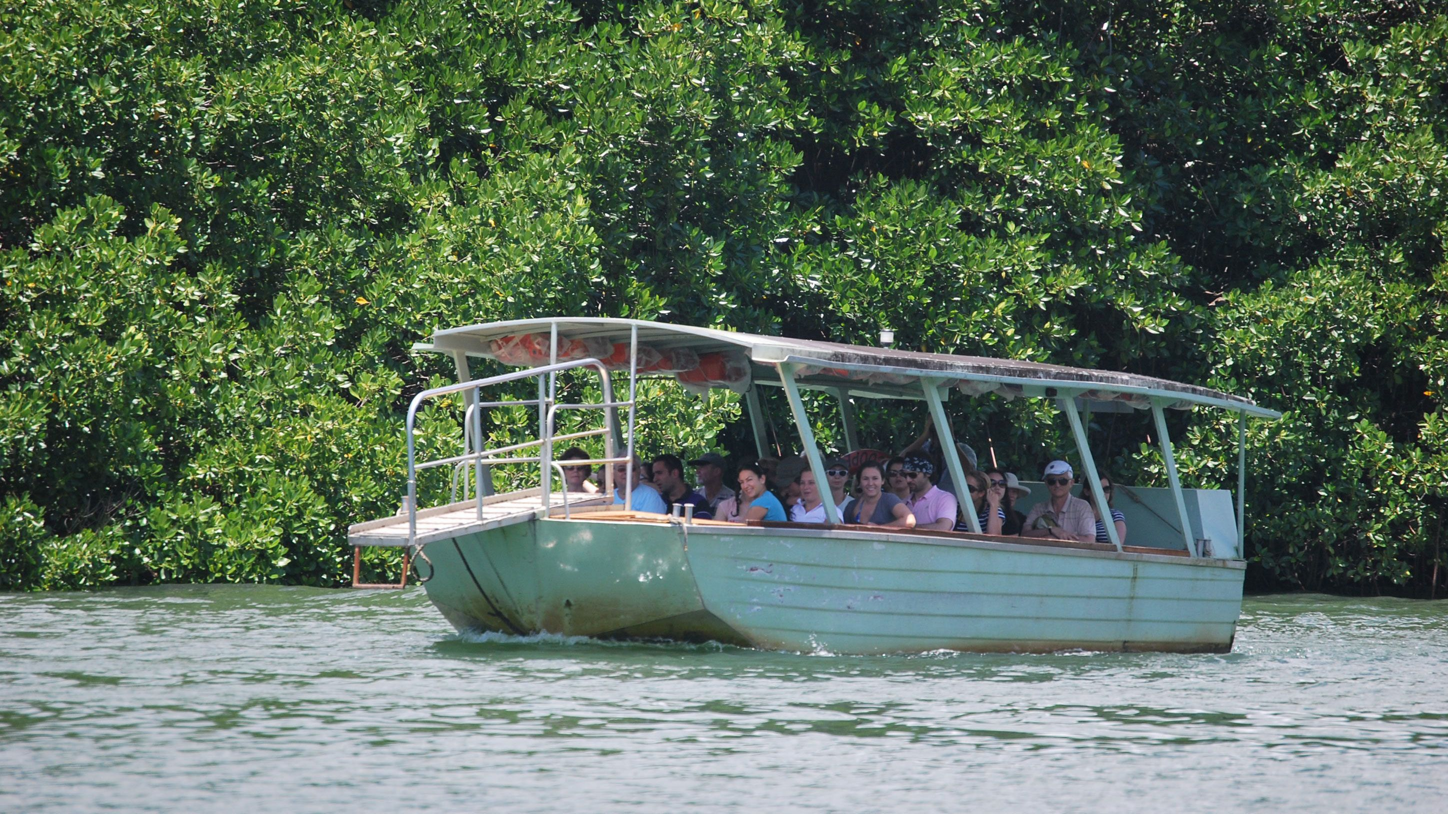 Boat used on the Daintree Rainforest Tour in Cairns Australia