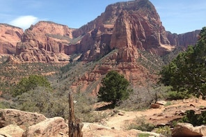 Shuttle Services to Zion National Park