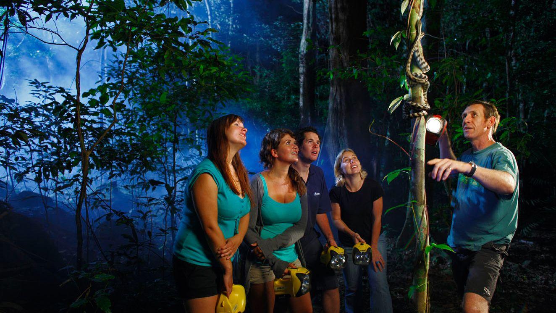 Jungle Adventure Night Walk