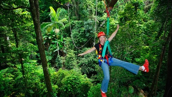 Cape Tribulation & Zipline Canopy Tour with River Cruise