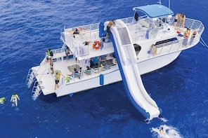 Maui Snorkelling to Coral Gardens - All-Inclusive 3-Hour Afternoon Session