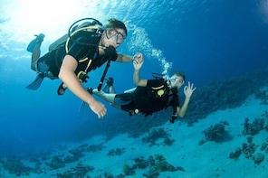 Goa Scuba Diving At Grand Island