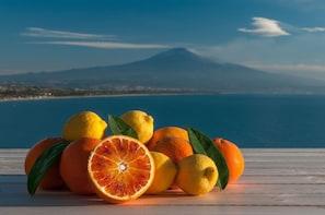 Half day Mt. Etna foothills tour from Taormina