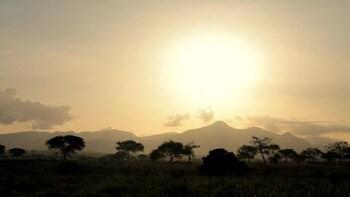 Kidpeo North Uganda Trip