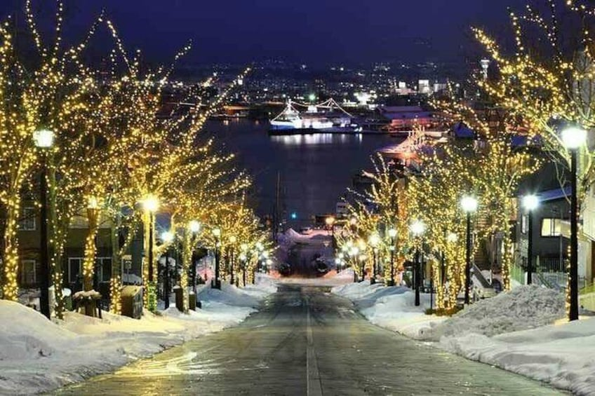 Show item 3 of 16. Hakodate Full-Day Private Tour with Nationally-Licensed Guide