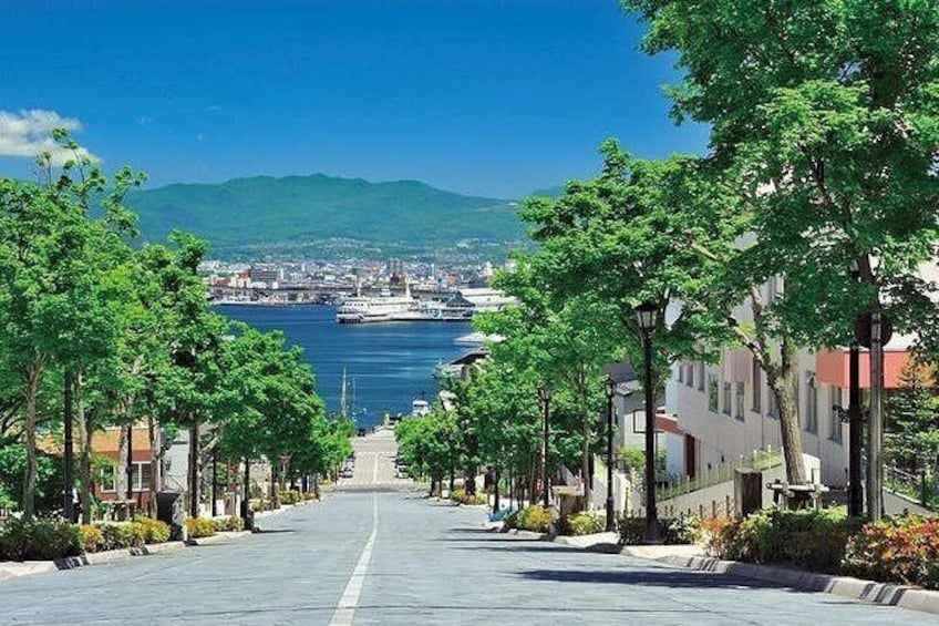 Show item 2 of 15. Hakodate Full-Day Private Tour with Nationally-Licensed Guide