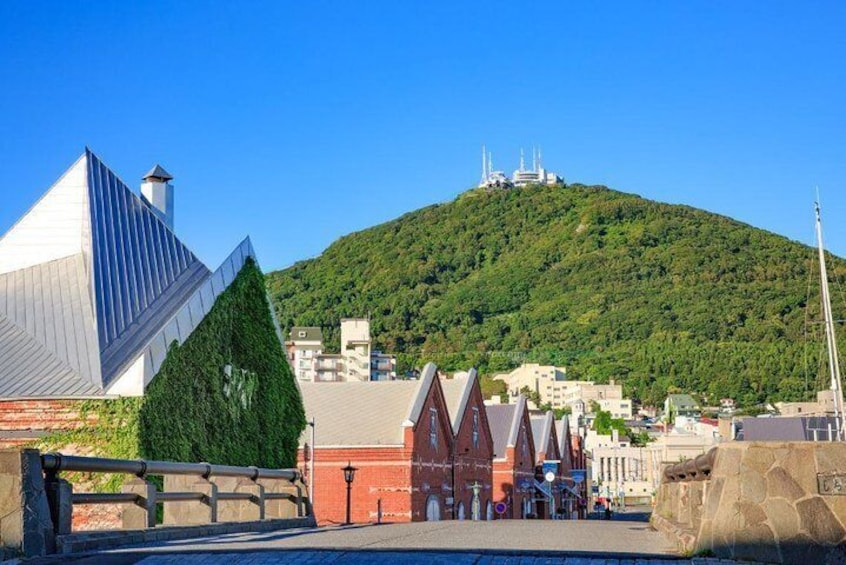 Show item 4 of 16. Hakodate Full-Day Private Tour with Nationally-Licensed Guide