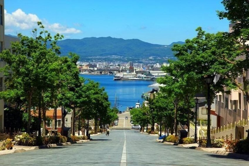 Show item 2 of 16. Hakodate Full-Day Private Tour with Nationally-Licensed Guide