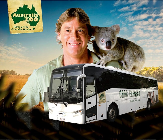 Show item 3 of 7. Australia Zoo Admission with Express Transfers