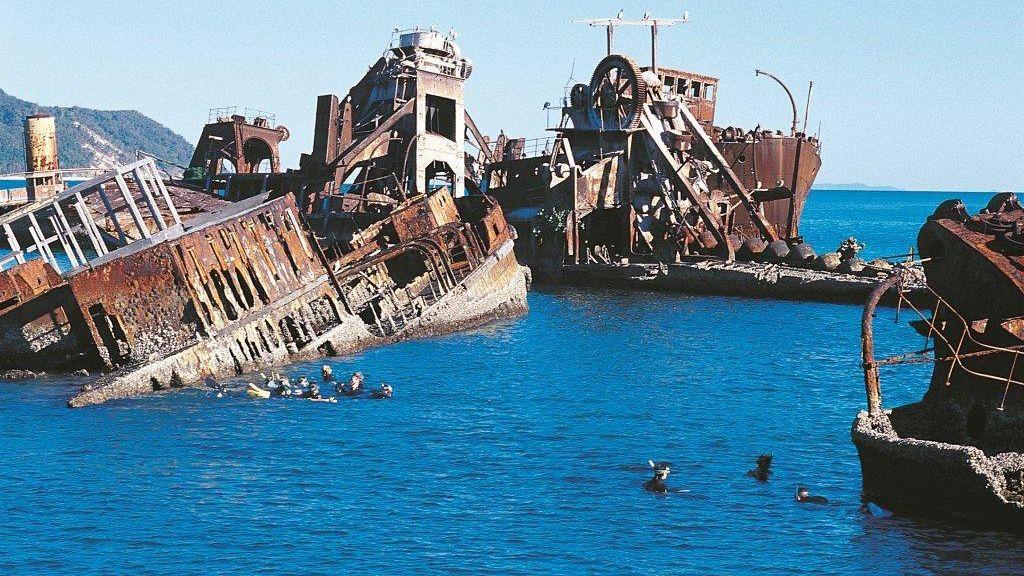 snorkeling amongst sunken rusty ships in Brisbane.
