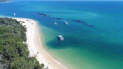Dolphin_Wild_Island_Cruises_Lunch_Spot_Moreton_Island.jpg