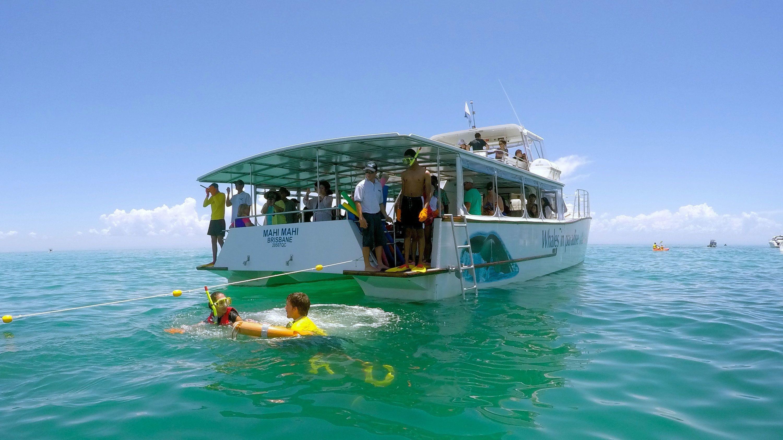 snorkelers swim around pleasure craft in Gold Coast