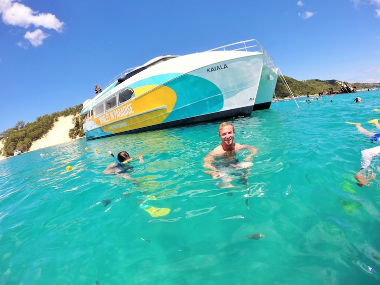 Charger l'élément 1 sur 8. Dolphin Watch & Tangalooma Wreck Snorkeling 1 Day Tour