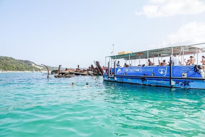 Charger l'élément 5 sur 8. Dolphin Watch & Tangalooma Wreck Snorkeling 1 Day Tour