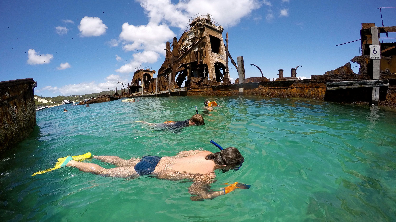people snorkeling amongst rusty sunken ships in Gold Coast