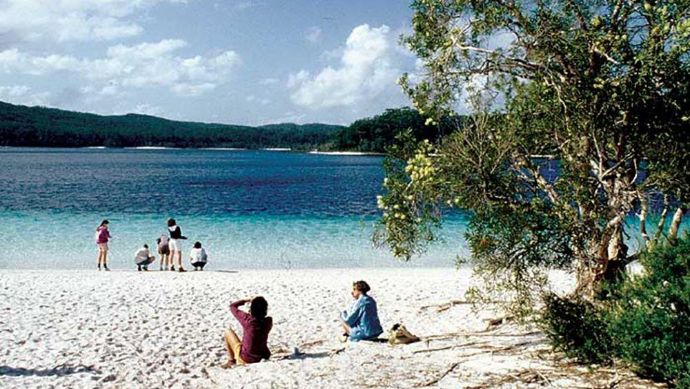 Full-day Fraser Island 4x4 Adventure Tour