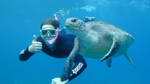 Snorkeler and sea turtle pose for picture on the Sea Turtle Snorkeling Tour in Byron Bay in Australia