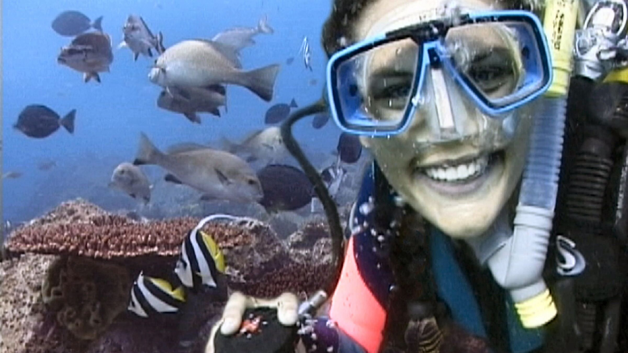 Girl under water on the Introductory Scuba Diving Tour in Byron Bay in Australia
