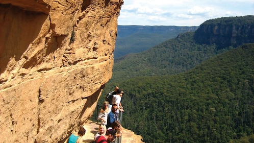 group of people look over rock cliff at forest in Blue Mountains