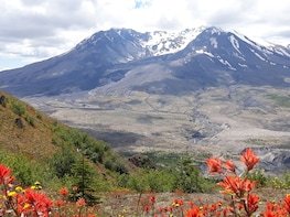 Mt Saint Helens Private Tour