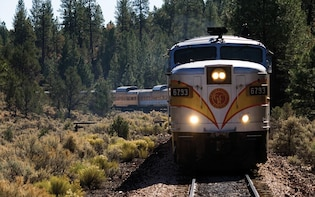 Grand Canyon Tour with Train Ride