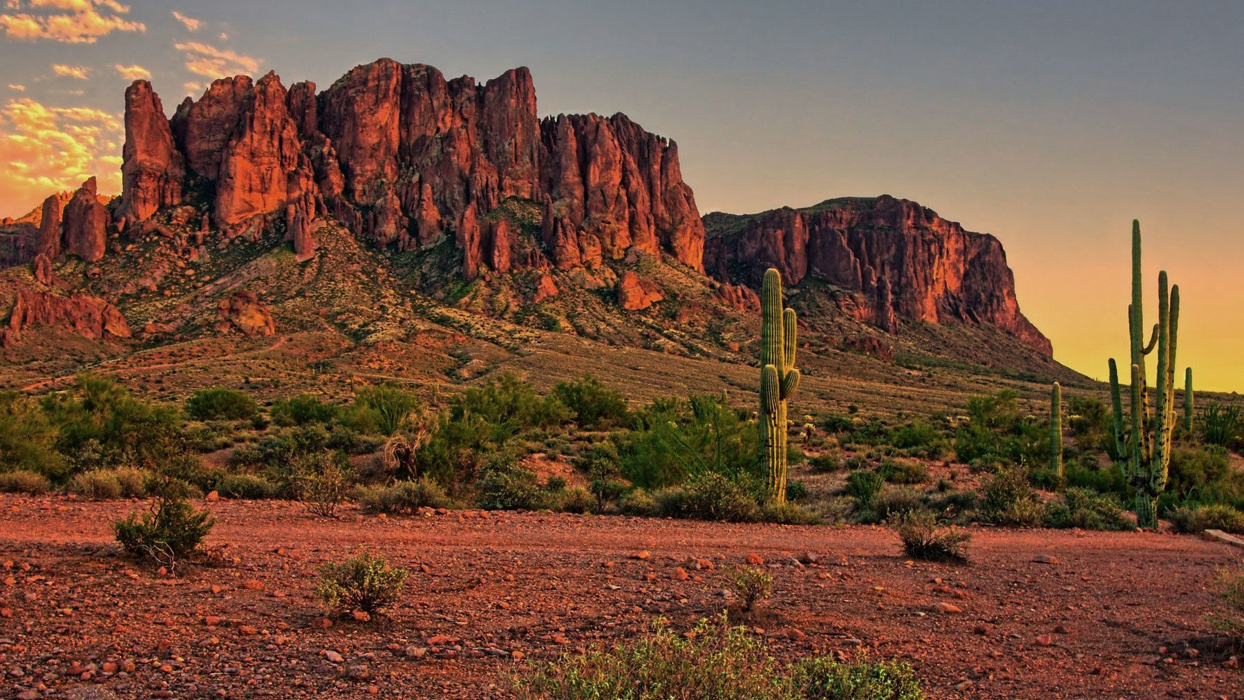 Red rock formations and cactus at sunset in Phoenix