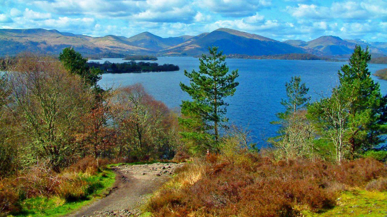 Visita al Castillo de Stirling y el Parque Nacional Lago Lomond y Trossachs