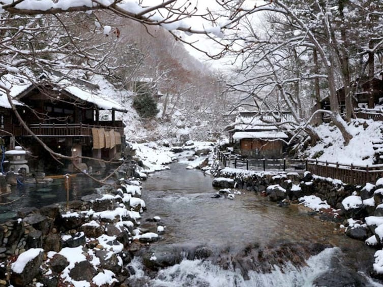Show item 2 of 2. The Beauty of Minakami Onsen
