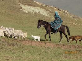 Mokhotlong Day Tour into Lesotho