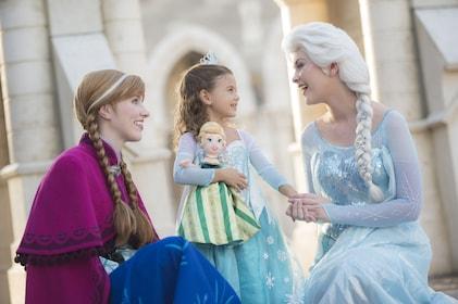 Walt Disney World® Resort Theme Park Ticket