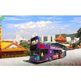 Penang Hop-On Hop-Off Sightseeing and Sunset Tours
