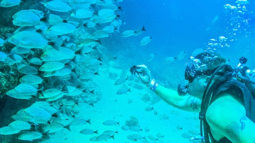 Scuba diving man taking a photo of a school of fish in Puerto Vallarta.