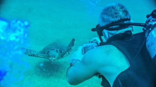 Scuba diving man taking a photo of a sea turtle in Puerto Vallarta.