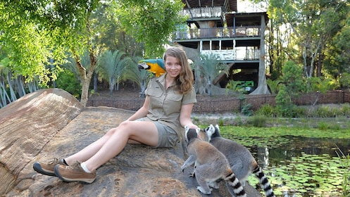 girl sitting near pond with lemurs and a parrot at Australia Zoo