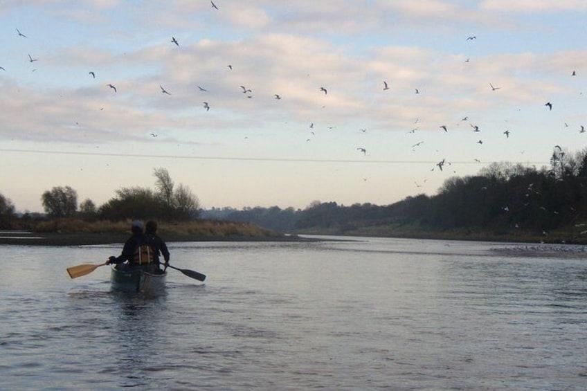 Canoe River Trip