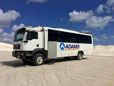 Pinnacles Desert, Koala, Sand Boarding and 4WD Tour